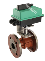 Моторизированный клапан Compact Pro 2/2 Двухходовой шаровый кран (чугун в сборе с п.)